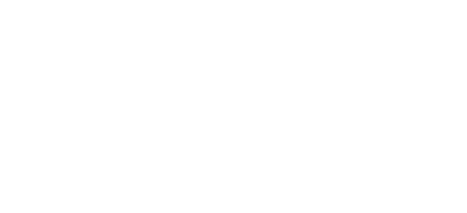 cd project red store